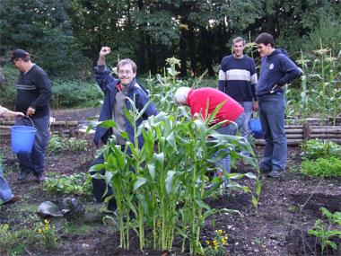 Gartenprojektgruppe